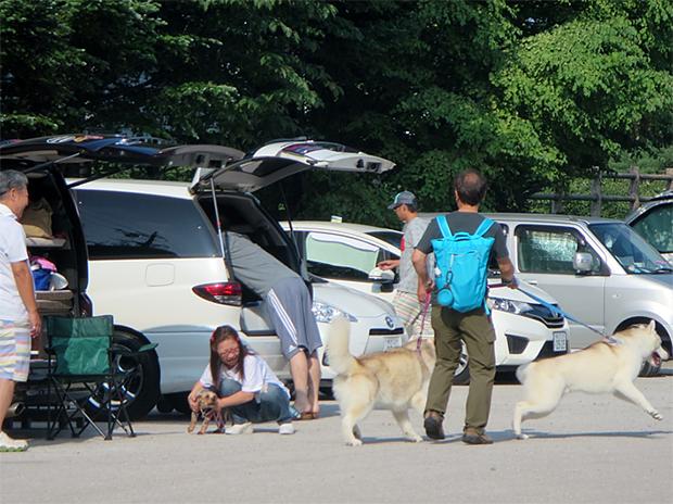 休日にワンボックスカーなどでリラックスする家族連れ(長野県軽井沢町にて)
